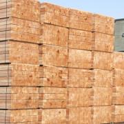 92家木企参加南浔镇重点行业环保管理标准化建设推进会