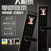 厂家批发 高清人脸锁 办公室人脸锁 新款智能人脸锁 欢迎订购